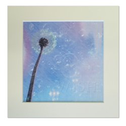8'' x 8'' (Mount size) Square Gesso Mounted Prints